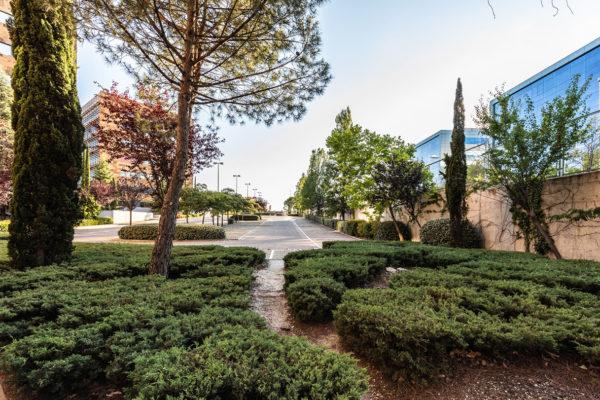zona verde parque empresarial