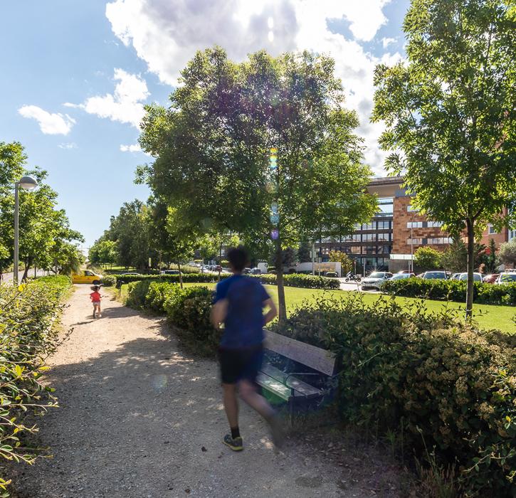 persona corriendo en zonas verdes alrededor de castellana norte madrid